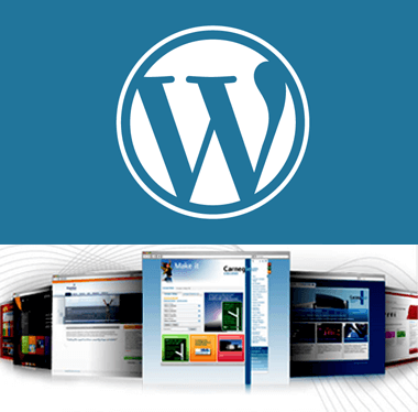 SynapseCo WordPress Development Services