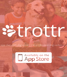 Peer-To-Peer Dog Walking App