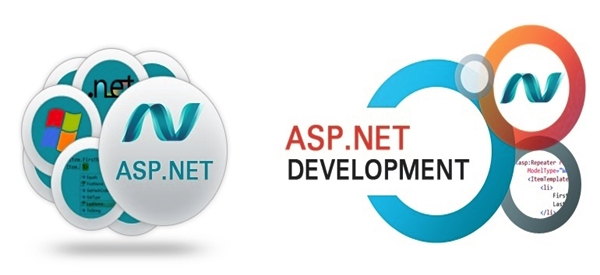 ASP.NET development company