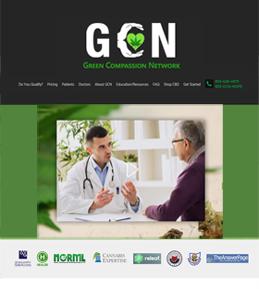 Design & Development of a WordPress Website for Medical Industry, USA – GCN
